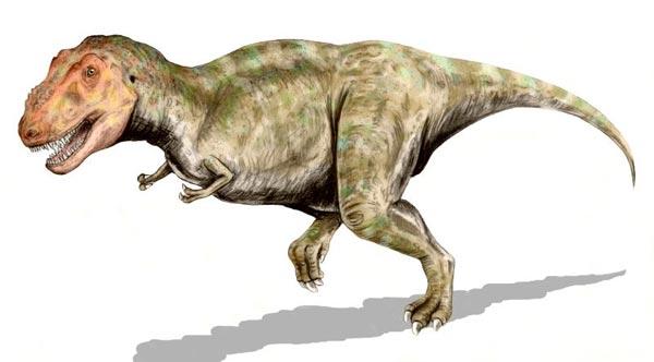 tyrannosaurus rex  könig der herrscherechsen